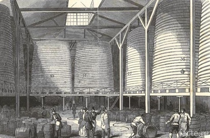 Пивоварня «Horse Shoe Brewery»
