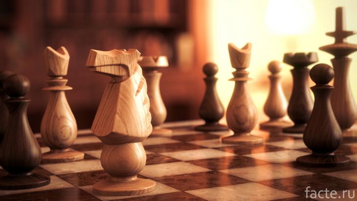 Шахматы на доске