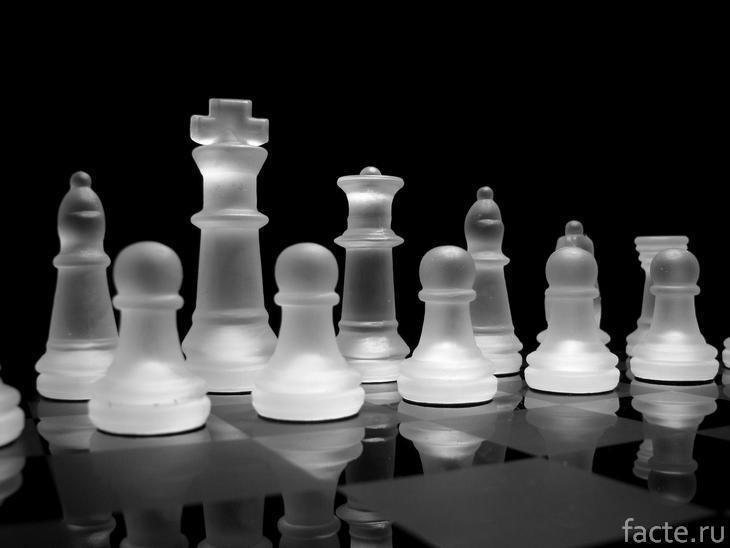 Прозрачные шахматы