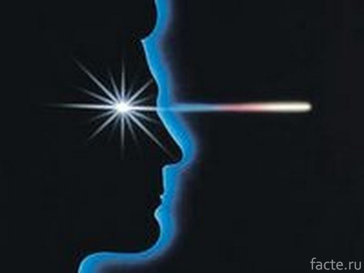 Магниточувствительность глаз