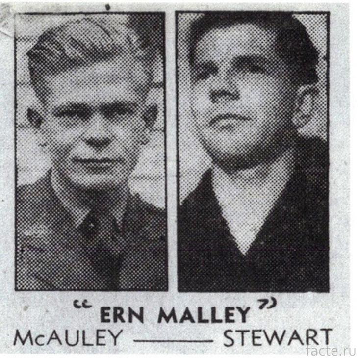 Стюарт и МакОли