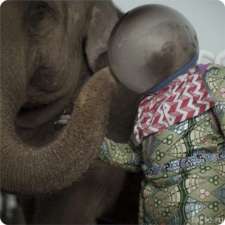 Африканский космонавт и слон