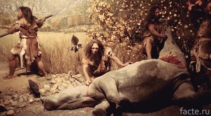 Первобытные люди разделывают носорога