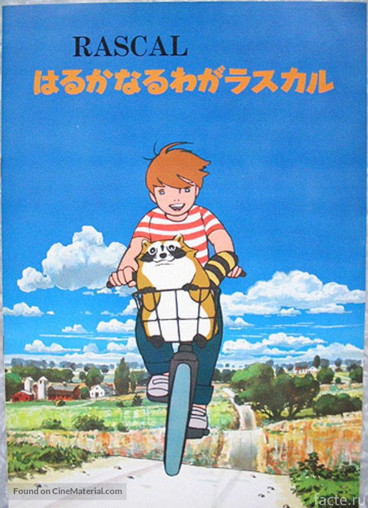 Постер аниме «Araiguma Rasukaru»