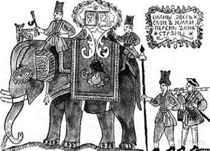 слон грозного Ивана