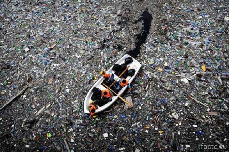 Остров из мусора
