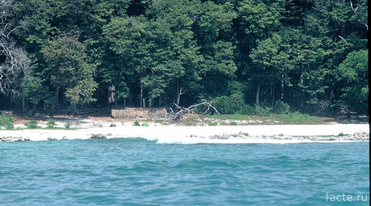 Сентинельские острова
