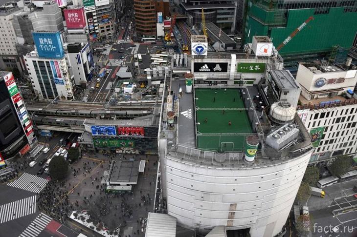 Крыша супермаркета в Японии