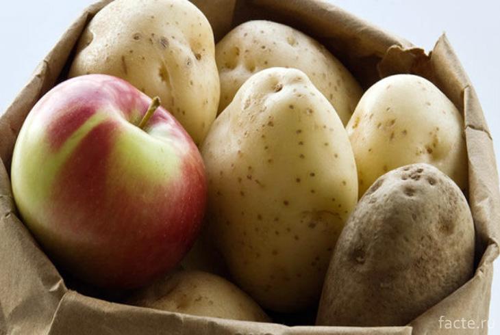 Хранение клубней картофеля