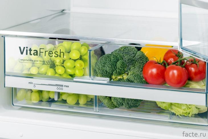 Грамотное хранение овощей и фруктов в холодильнике
