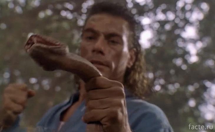 Расправиться со змеей голыми руками
