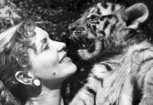 Маргарита Назарова с тигренком
