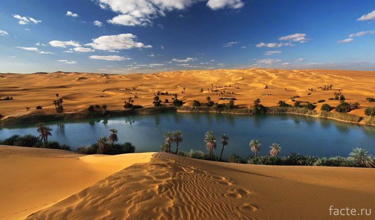 Африканская пустыня