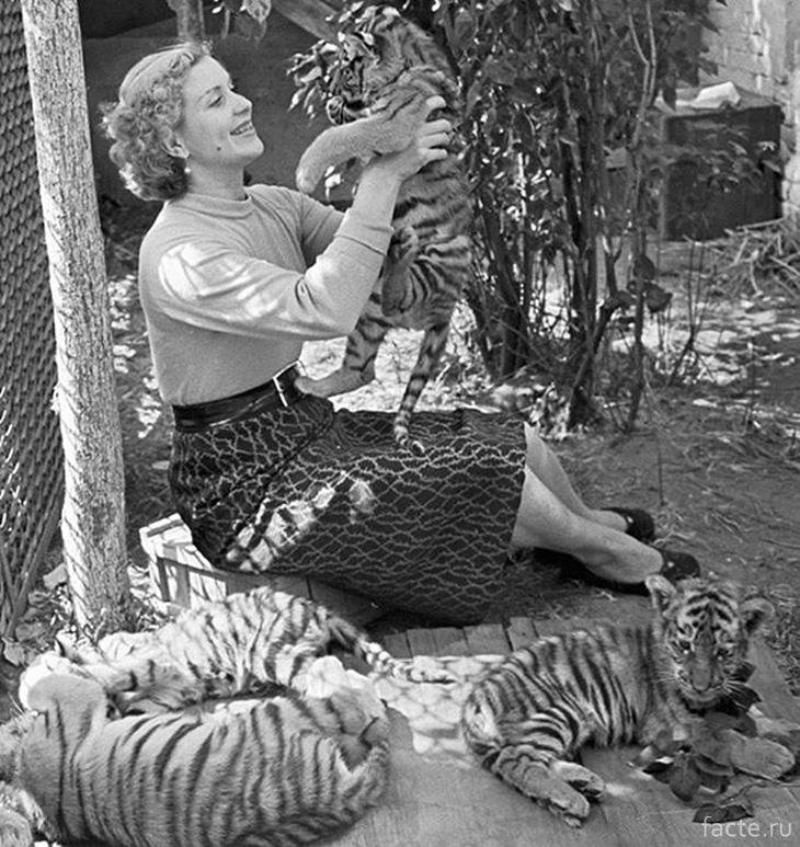 С тигрятами