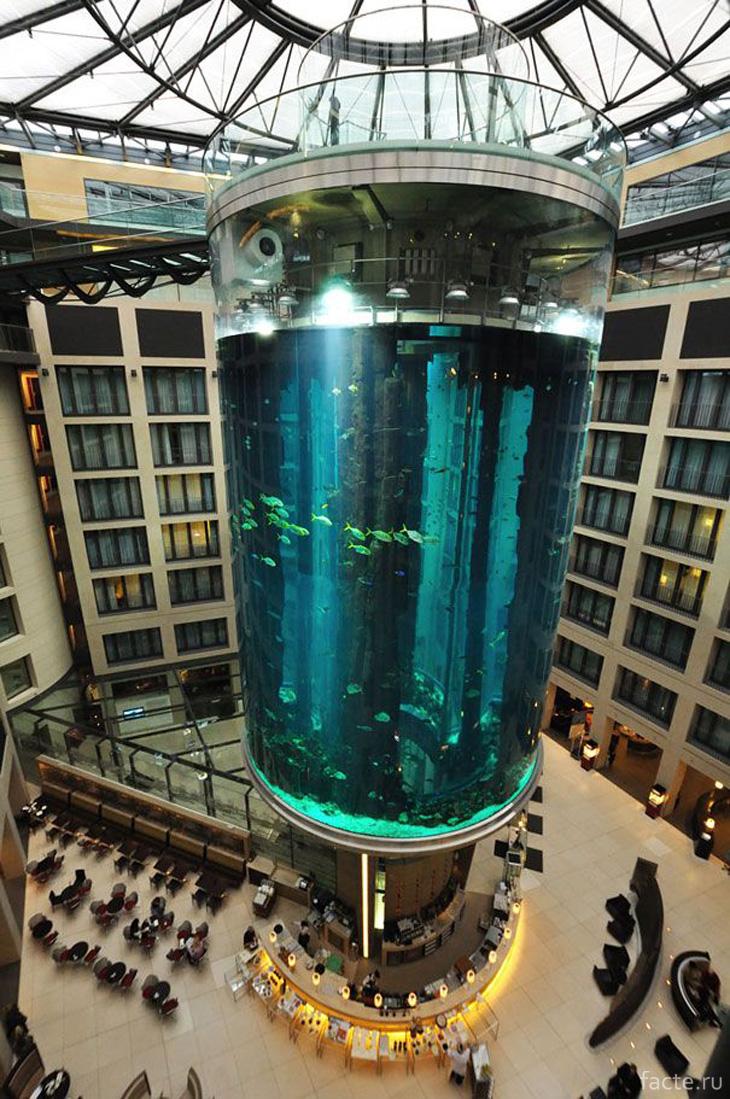 Лифт Fishtank