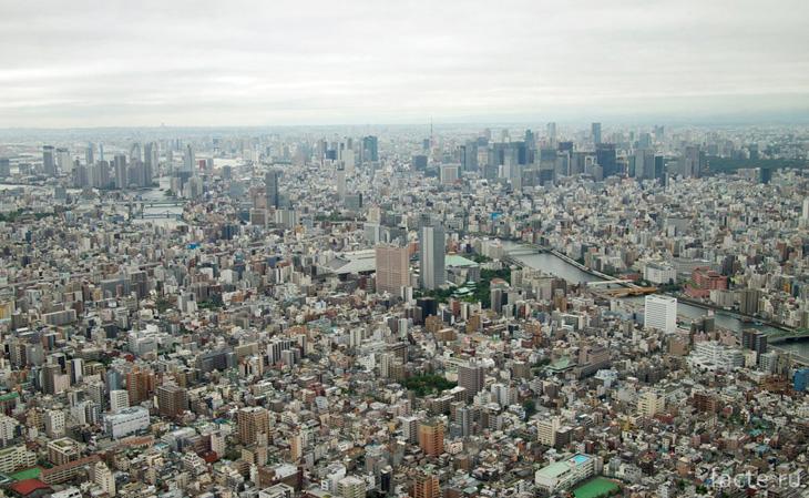 Токио Скайтри