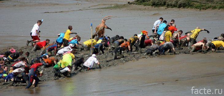 Мэлдонская грязевая гонка