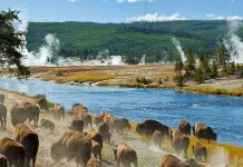 Лучшие национальные природные парки мира