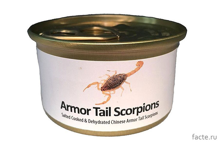 Консервированные скорпионы