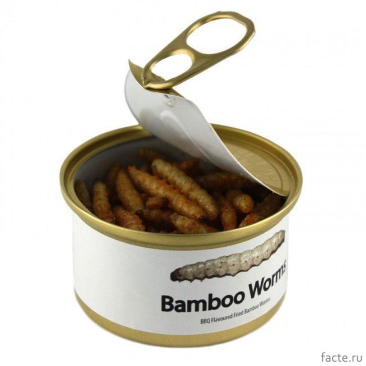 Консервированные бамбуковые черви