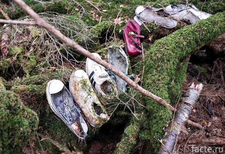 Обувь мертвых