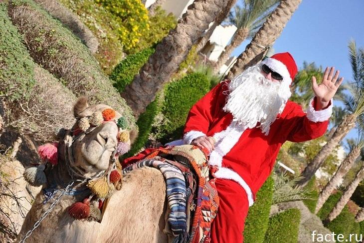 Новый год Египет