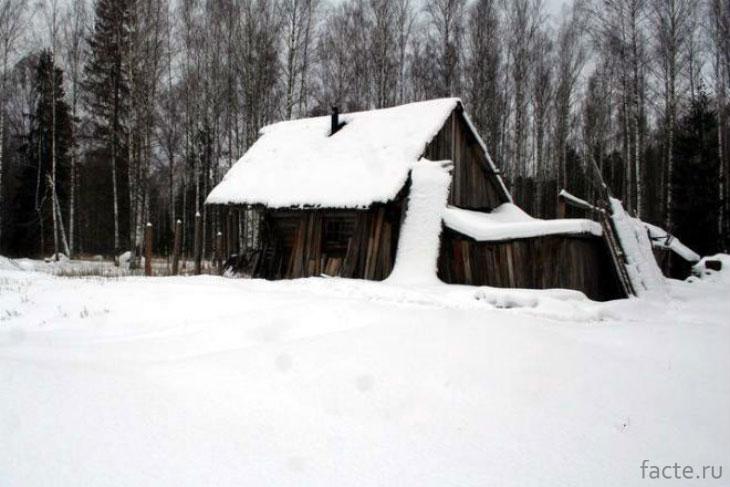 Дом в тайге