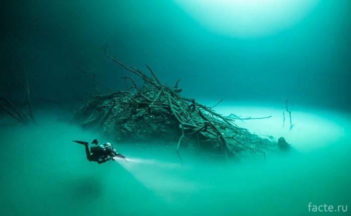 Подводная река Анхелита
