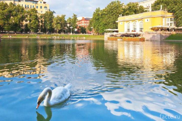 Патриаршие пруды – или Козьи болота