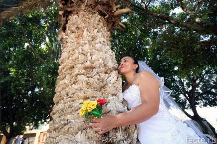 Женитьба на дереве