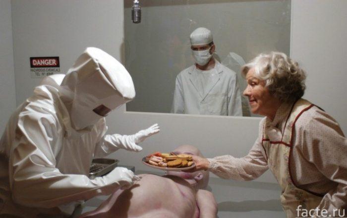 Инопланетянин и печеньки