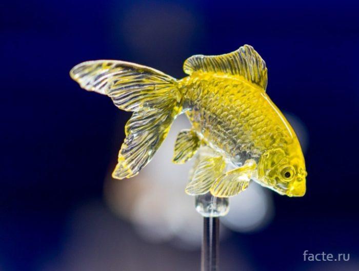 леденец рыба