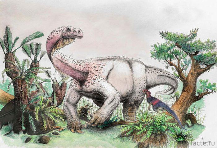 Находка самого древнего живого существа