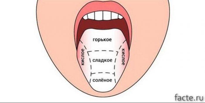 Карта языка