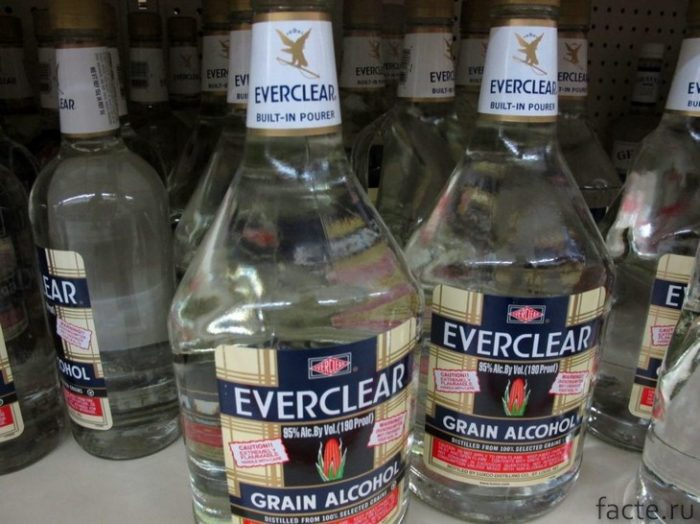 Everclear Grain