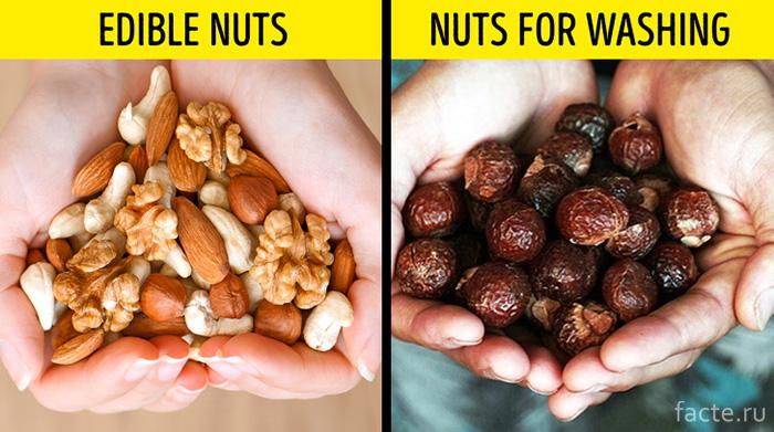 Орехи для стирки