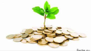 Деньги и росток