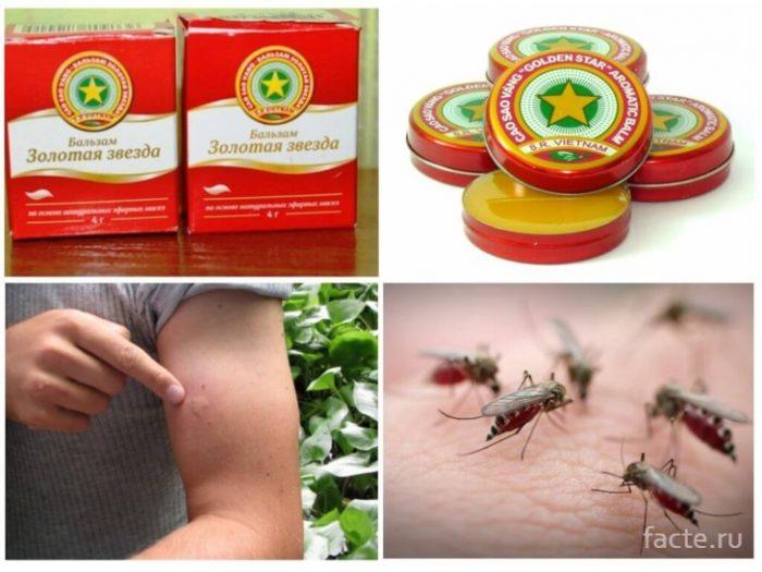 звездочка-комары