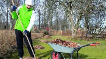 Садовые работы