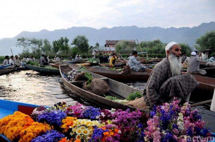 Кашмир 1