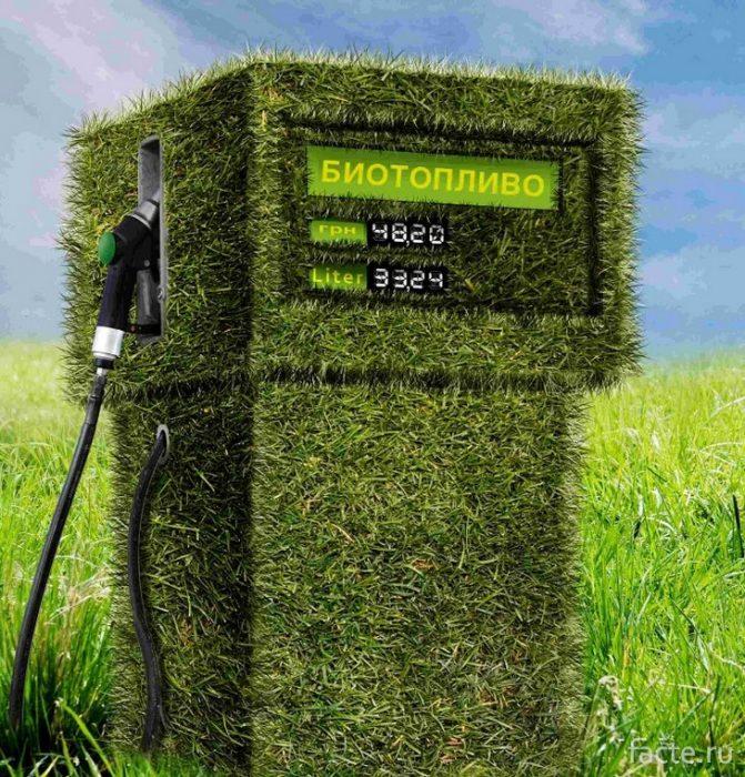 био-топливо