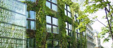 Зеленый-фасад