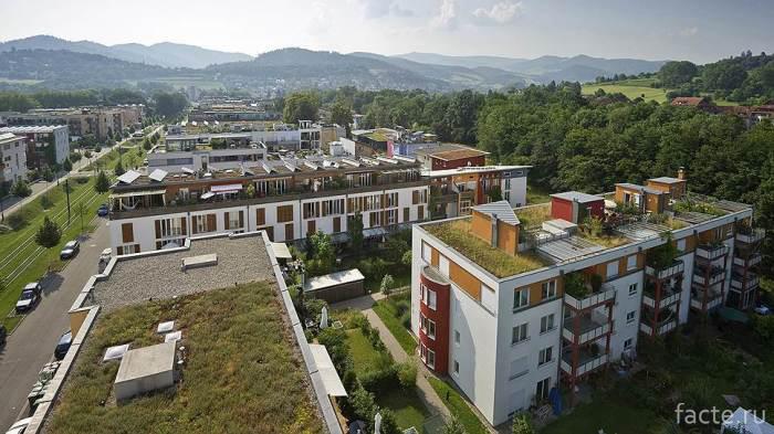 Озеленение-домов