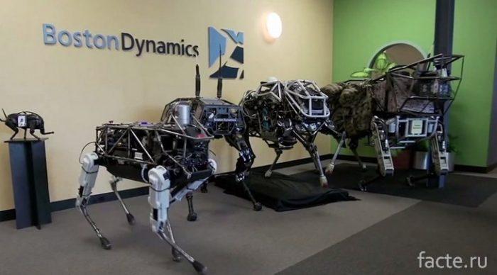животные-роботы