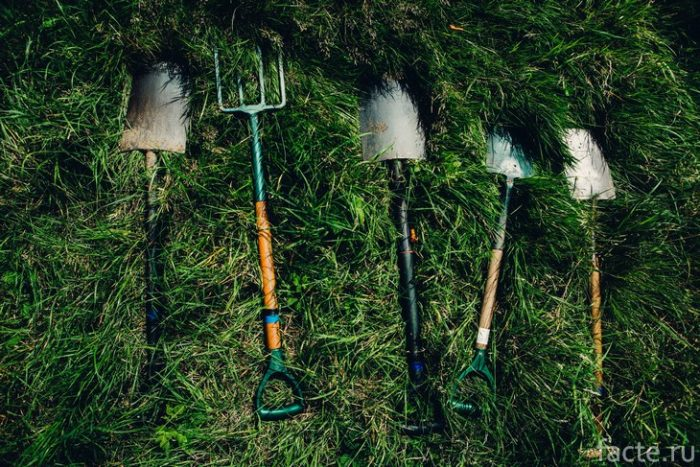 лопата и грабли
