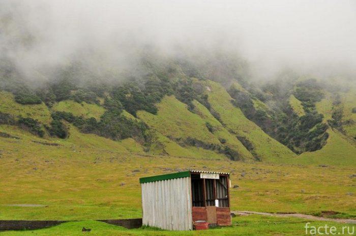 Тристан-да-Кунья острова