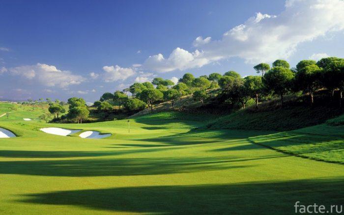 поле для игры в гольф