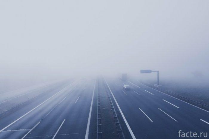 туман на дороге