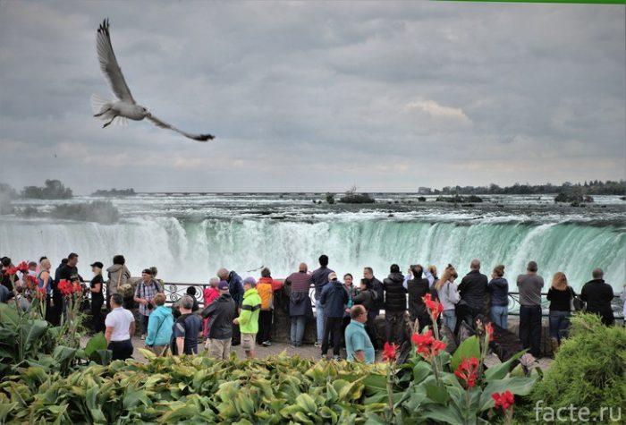 туристы у водопада