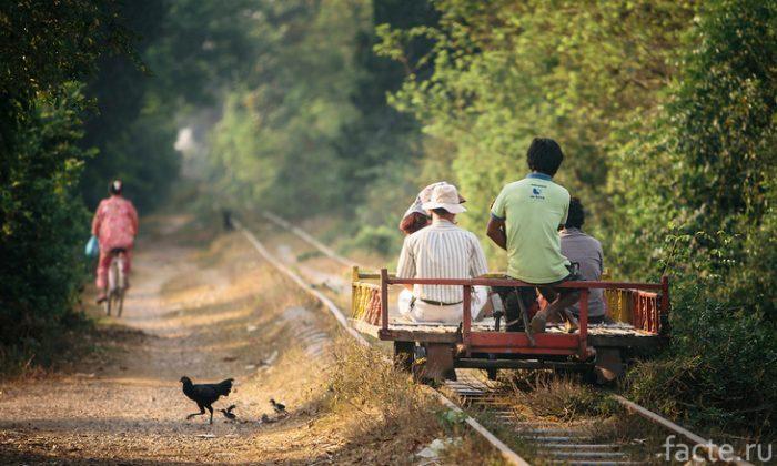 поезд из бамбука